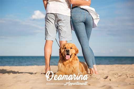 Animali Ammessi su Richiesta, Appartamenti Deamarina Marina di Massa